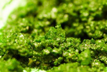 Algi w pielęgnacji skóry